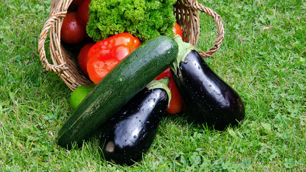 Peperoni, Zucchini und Aubergine in einem Korb.