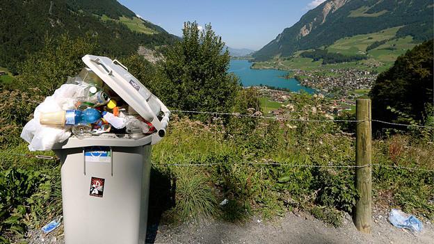 Abfalleimer in der Natur.