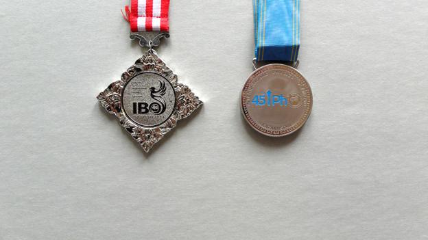 Zwei Silbermedaillen vor grauem Hintergrund.