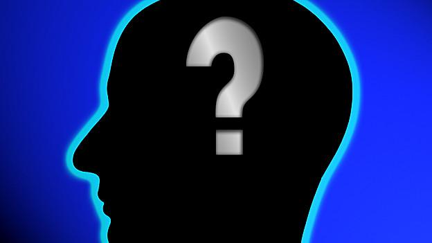 Kopf mit Fragezeichen im Hirn.