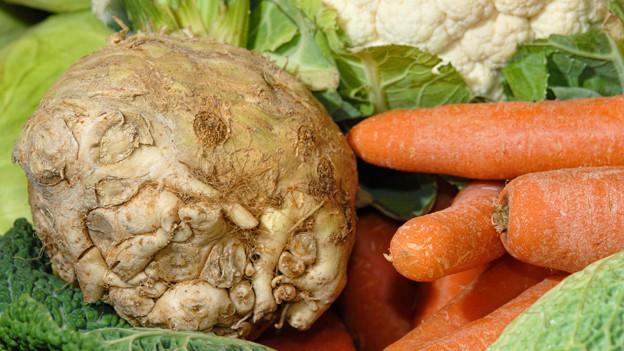 Sellerie und Karotten.
