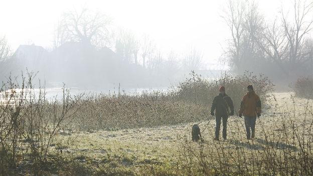 Zwei Personen führen einen Hund auf der Wiese spazieren.