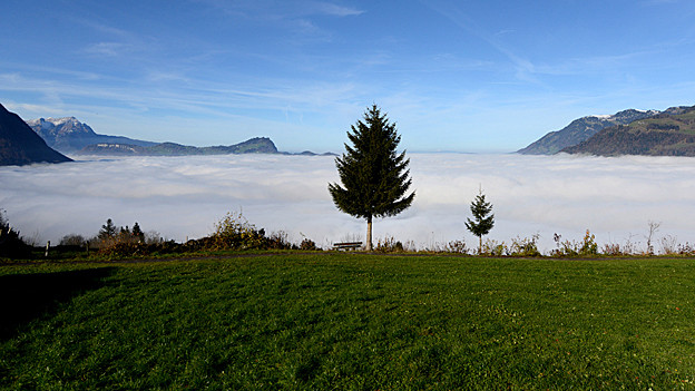Nebel und Wiesen in Nidwalden.