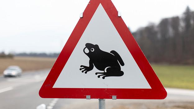 Warnschild mit Frosch.
