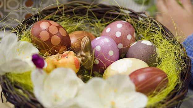Blick in ein Osternest mit farbigen Eiern.