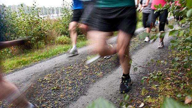 Nachaufnahme von den Füssen einer Läufergruppe.