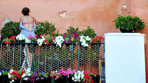 Frau giesst ihre Balkon-Pflanzen.