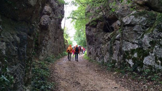 Wandergruppe von «Querfeldeins» 2014.