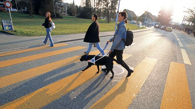Eine Frau mit Blindenhund überquert einen Fussgängerstreifen.