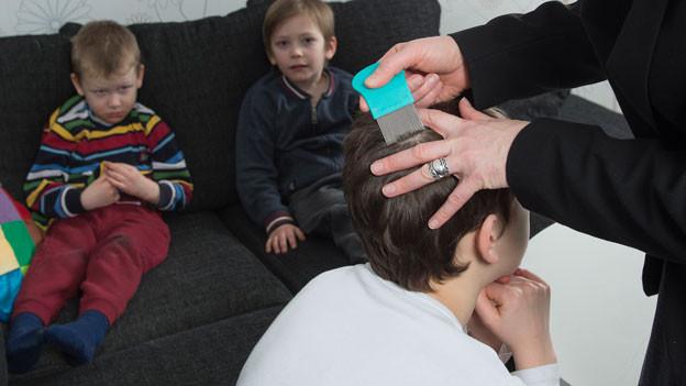 Ein Knabe wird mit einem Lauskamm gekämmt, im Hintergrund sitzen zwei weitere Kinder.