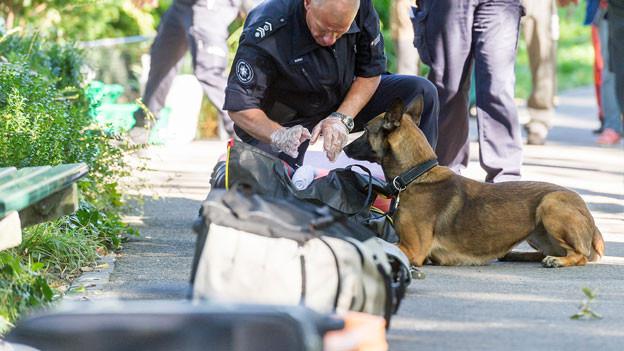 Ein Spürhund übt mit einem Trainer bei einer Tasche.