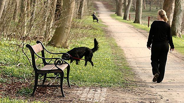 Frau beim Spaziergang mit Hund.