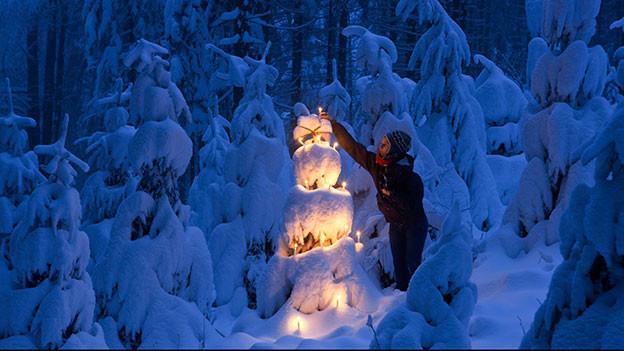 Verschneite Tanne im Wald mit brennenden Kerzen.