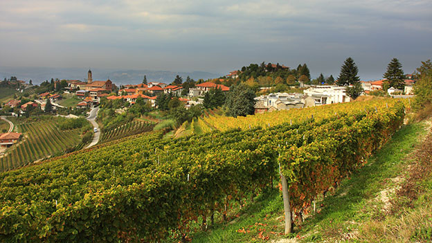 Blick auf Reben und Dorf im Piemont.