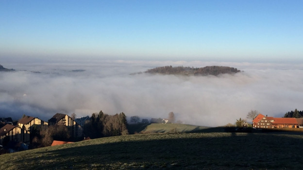 Aussicht auf das Nebelmeer.