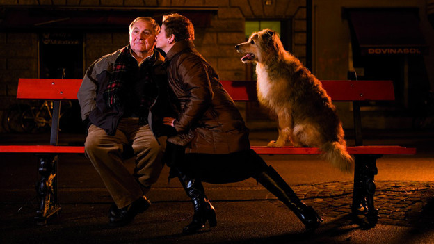 Filmszene: Jörg Schneider sitzt in der Nacht auf eine Bank und wird von einer Frau geküsst.