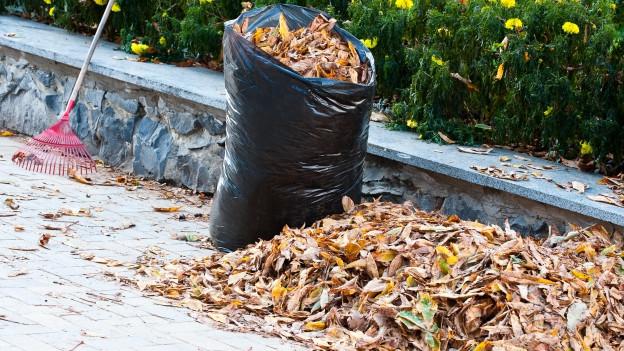 Ein Laubrechen und ein mit Laub gefüllter schwarzer Müllsack lehnen an einer Mauer