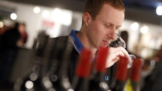 Ein Mann degustiert ein halbes Dutzend Rotweine