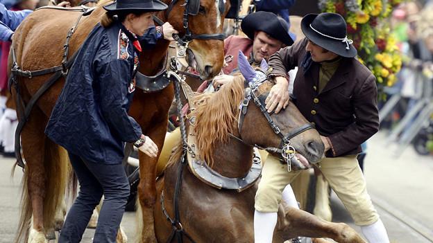 Drei Menschen scharen sich um ein gestürztes Pferd.