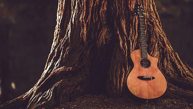 Gitarre an einen Baumstamm angelehnt.