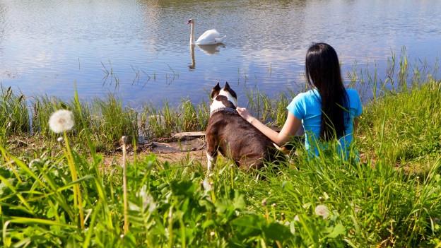 Frau sitzt mit Hund am Ufer eines Sees.