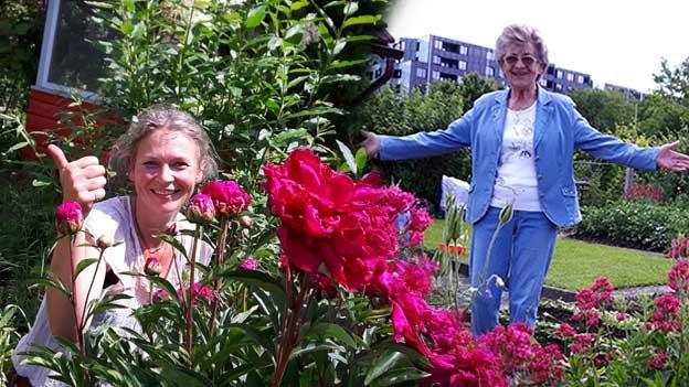 Bildmontage links eine 46-jährige Frau mitten in ihrem blühenden Garten, rechts eine 85-jährige Frau im blauen Kleid, ebenfalls in ihrem Garten ihre Arme wirft sie fröhlich in die Luft