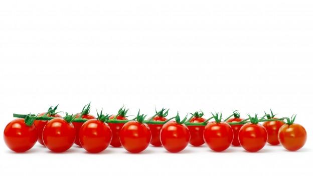 Tomaten am Zweig.