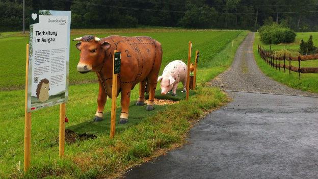 Lebensgrosse, unechte Tiere auf dem Buurelandweg Aargau.