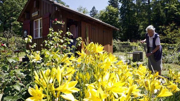 Ein Gartenhaus im Hintergrund, im Vordergrund ein Blumengarten