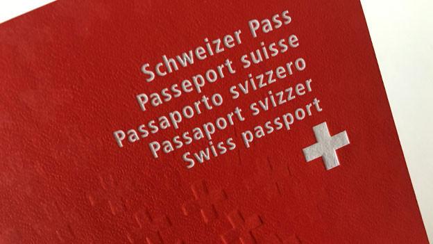 Roter Schweizer Pass.
