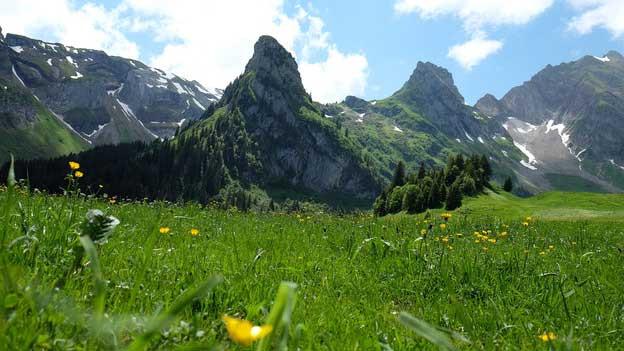 Berge im sommerlichen Kanton Uri.