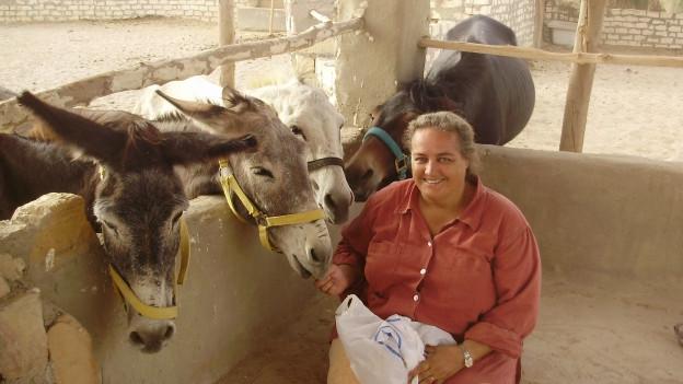 Monique Carrera sitzt in einem freistehenden Stall auf ihrer Tierfarm ausserhalb von Hurghada. Daneben stehen drei Esel und lassen sich von ihr streicheln.