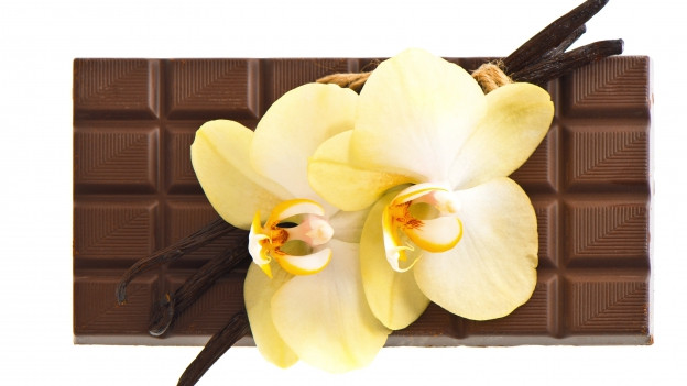 Vanilleblüte mit Vanilleschoten und einer Tafel Schokolade