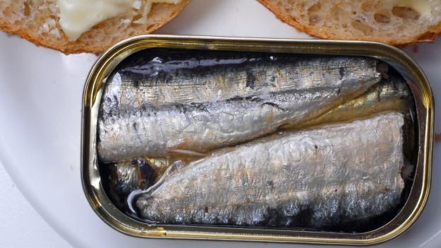 Sardinen in einer offenen Dose.
