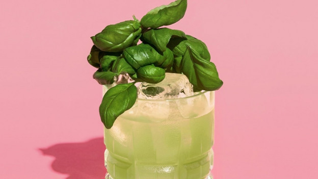Cocktail mit Gin und Basilikum-Essenz von Mikks in einem Glas.