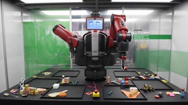 In 10 Jahren ist es denkbar, cass Roboter uns die Strassen wischen.