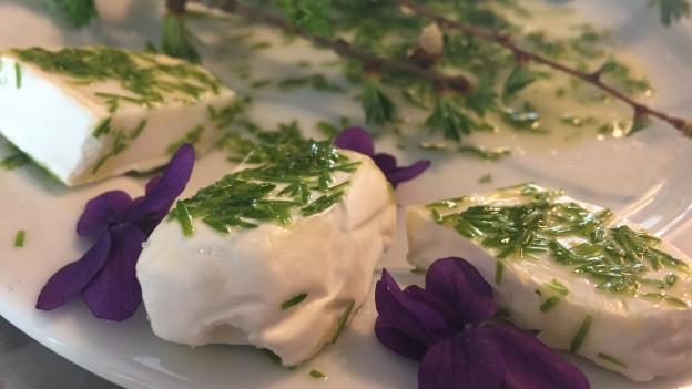 Ziegenkäse mariniert mit Lärchennadeln in Olivenöl.