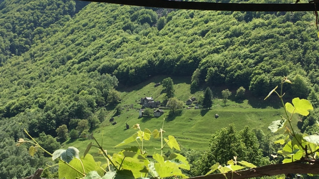 Eine Alp im Onsernonetal (TI)