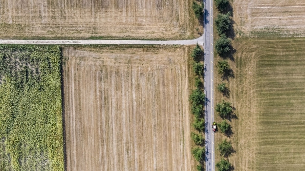 Trockenes Feld
