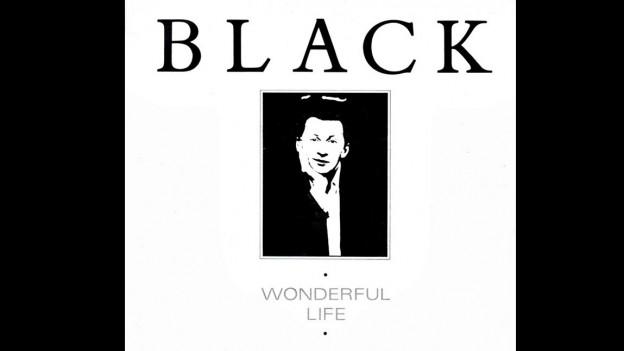 Singlecover des One-Hit-Wonders «Wonderful Life»