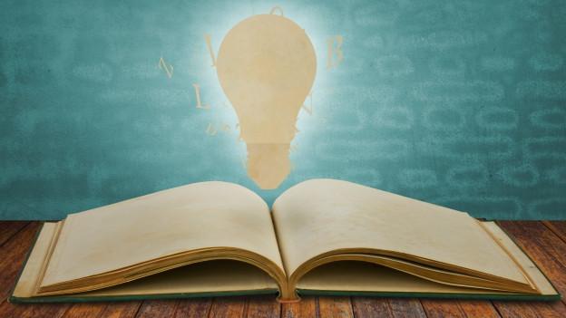 Buch mit Glühbirne.