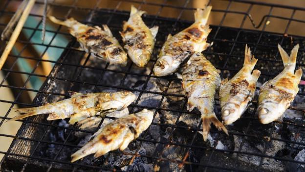 Fische auf dem Grill.