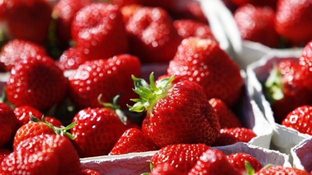 Körbe voller roter Erdbeeren