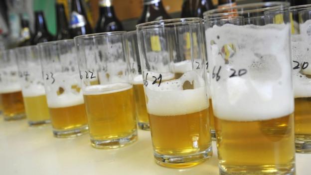 Verschiedene Biere in Testgläsern.