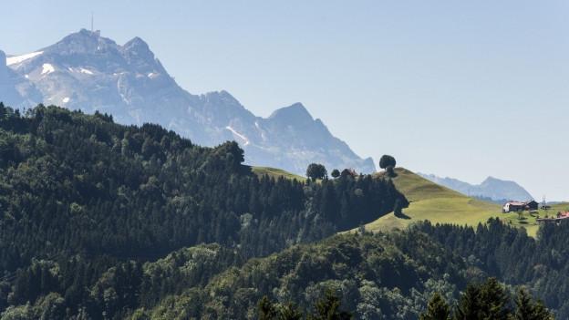 Appenzeller Landschaft mit dem Säntis im Hintergrund