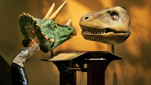 Mehr als nur bestaunen: Ein Museum ist auch für Forscher interessant.