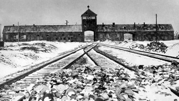Auschwitz, Januar 1945