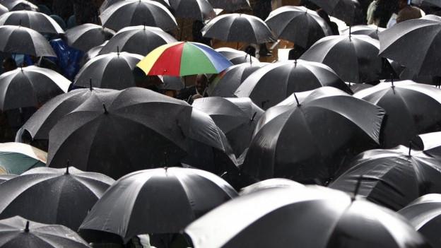 Ein bunter Regenschirm neben vielen schwarzen Regenschirmen.