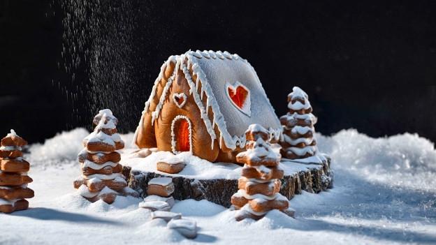Ein Lebkuchenhaus, ein Traum!
