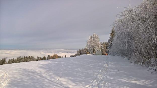 Kaienspitz im Appenzeller Vorderland